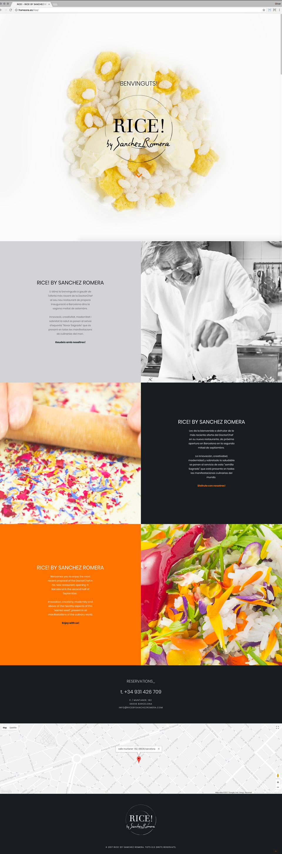 frameone-media-design-web-rice-by-sanchez-romera